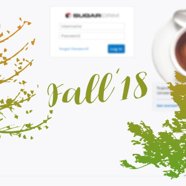 Sugar Fall'18 – nowa wersja systemu jest już dostępna!